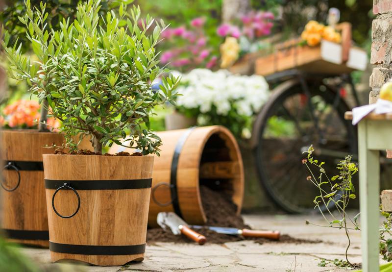547324a02a50f5 Anzucht- und Pflanzegefäße jetzt im Waschbär online Shop entdecken!