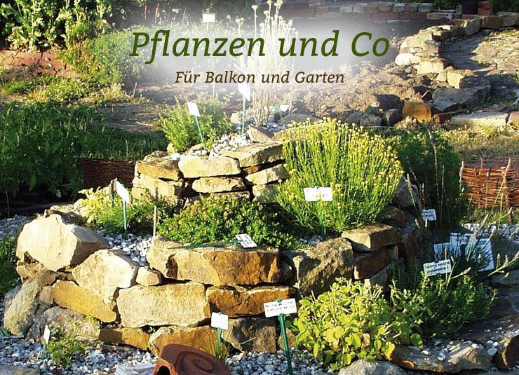 garten co gartenbedarf f r ihren biogarten von waschb r. Black Bedroom Furniture Sets. Home Design Ideas