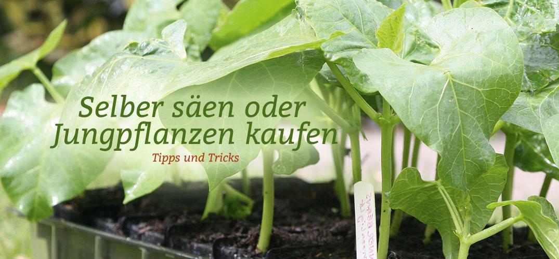 Gartengeräte Und Gartenzubehör ? Tipps Zur Lagerung Und Pflege ... Gartengerate Und Gartenzubehor Tipps Zur Aufbewahrung Pflege