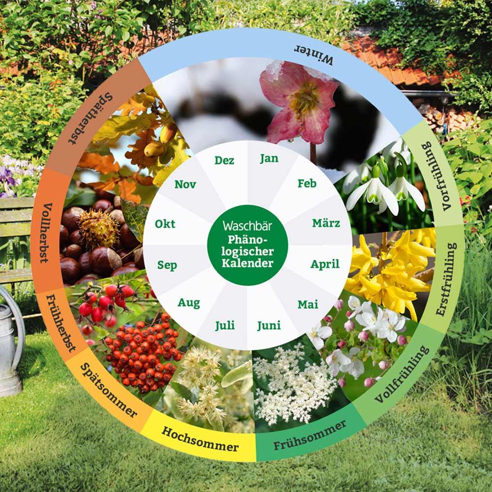 Garten Co Gartenbedarf Fur Ihren Biogarten Von Waschbar