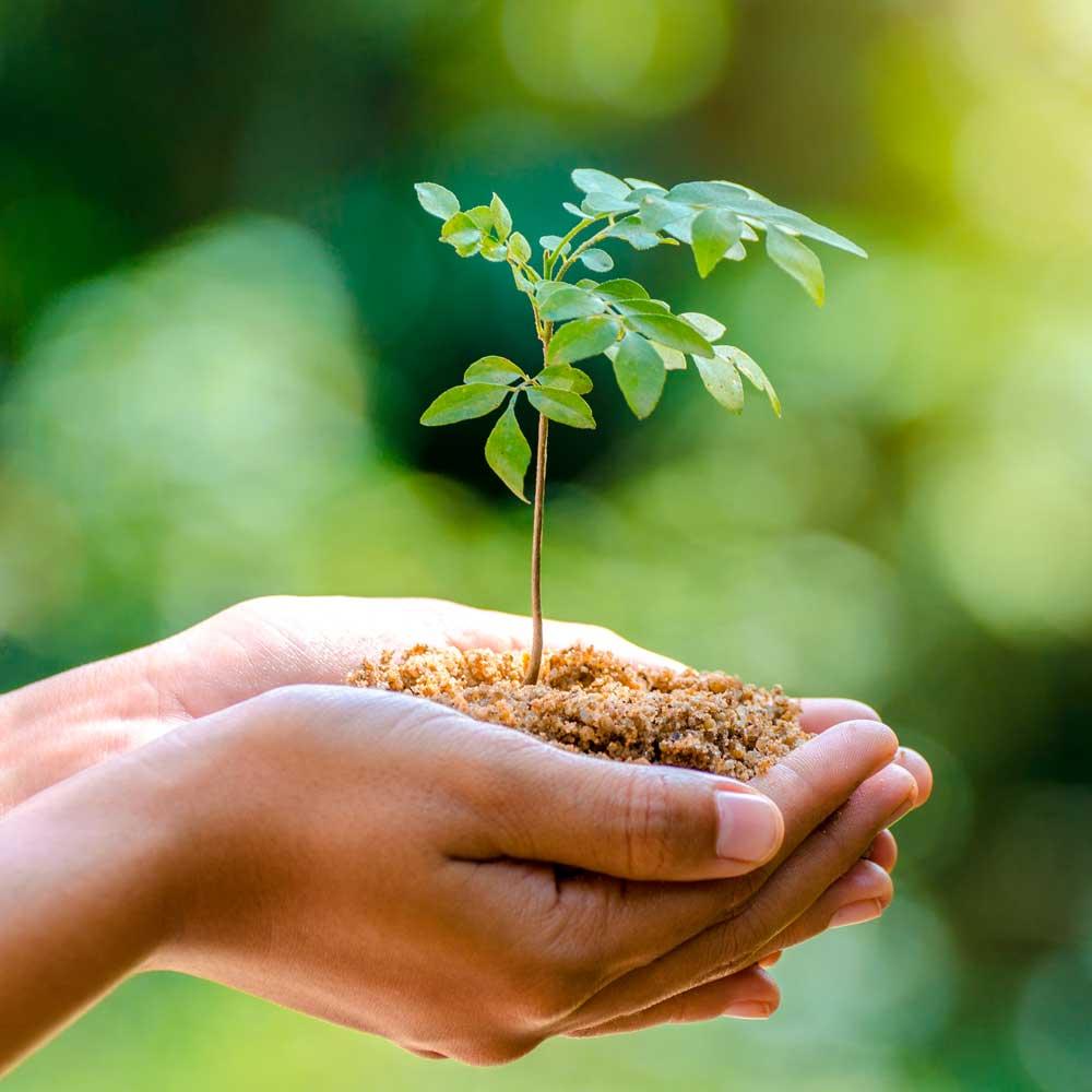 222c4cebd95393 Umweltversand für Naturmode   Bioprodukte