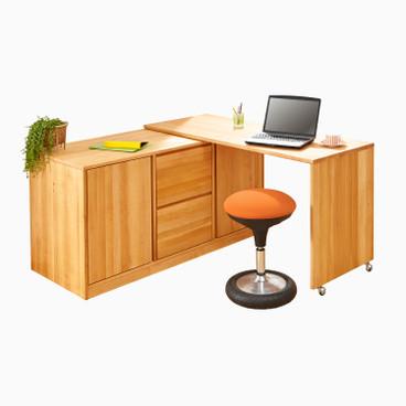 arbeitszimmer schreibtische holz waschb r online shop. Black Bedroom Furniture Sets. Home Design Ideas