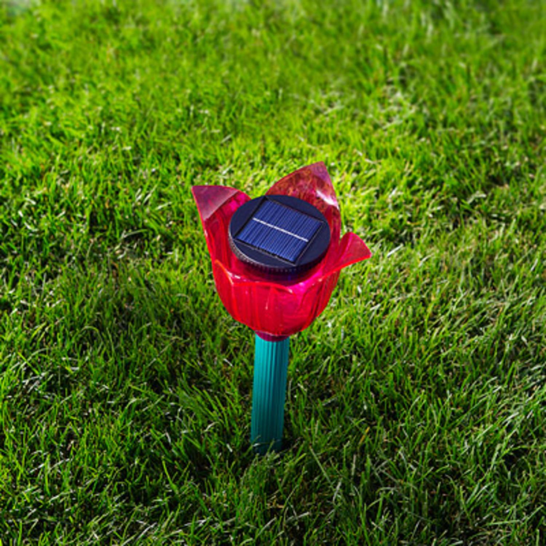 solar tulpe ameisenvertreiber mit led. Black Bedroom Furniture Sets. Home Design Ideas